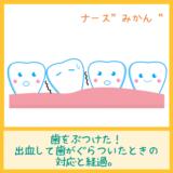 歯をぶつけた!出血して歯がぐらついたときの対応と経過。